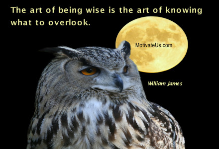 Nature – Nature Owl | A Library Of Inspirational Pictures With Quotes